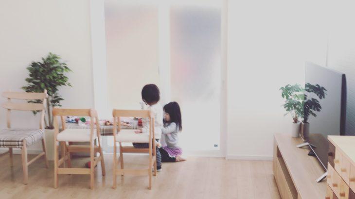 WEB内覧会LDK③アレルギーでも大丈夫!屋内のグリーンインテリアがおすすめな理由・詳細